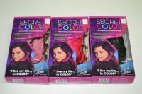 Secret color - barevné vlasy, falešný melír