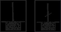 Balený ovocný keř - ostružina Thornfree - beztrnná